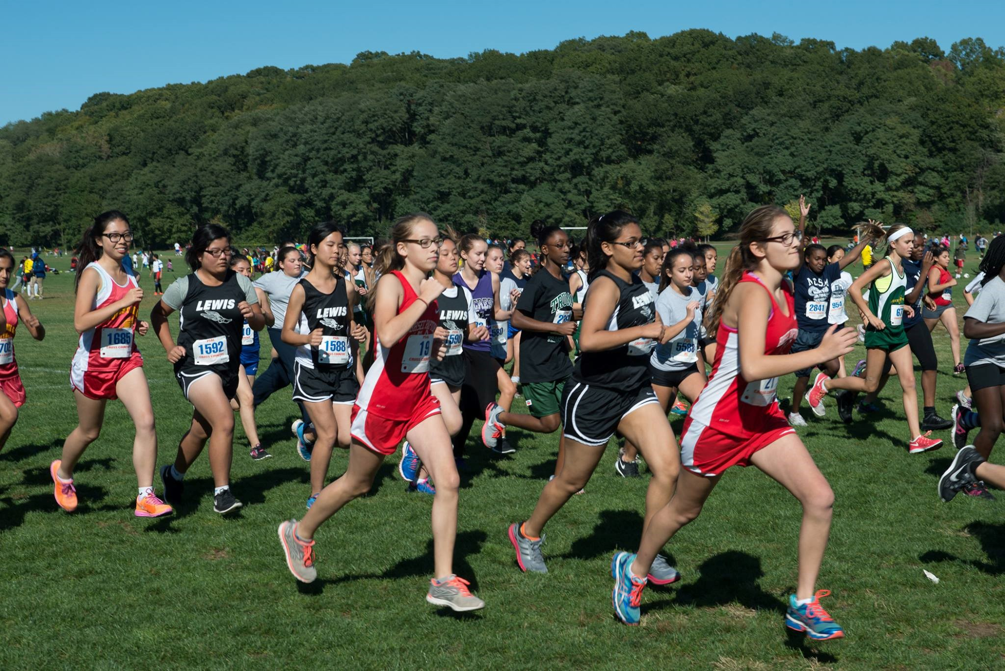 NYC Mayor's Cup Cross Country City Championships