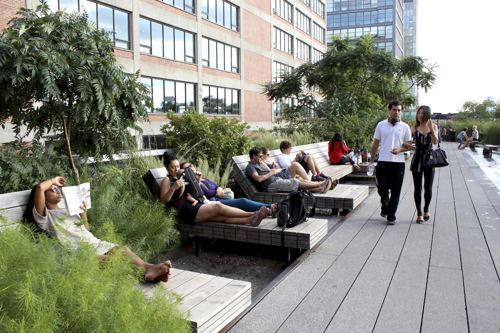 Explore The High Line Park This Summer image