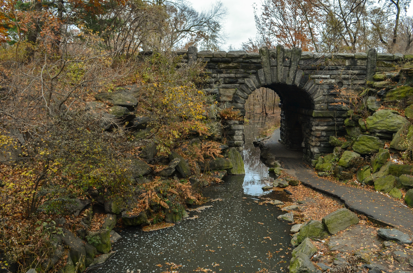 Places to Hike in New York City
