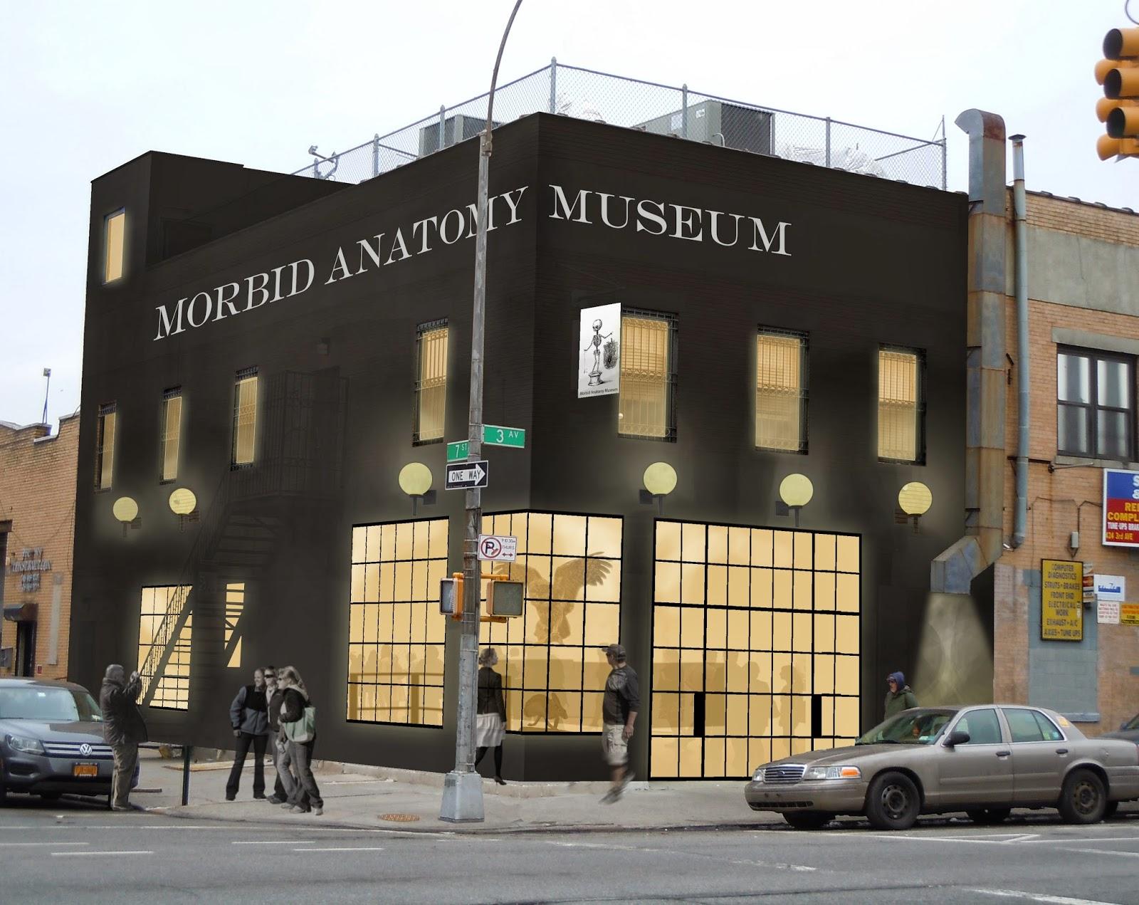 Morbid Anatomy Museum image